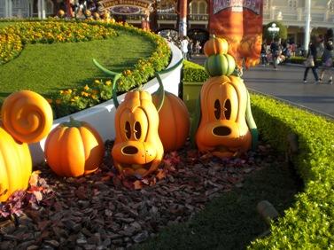 グーフィーかぼちゃ.JPG