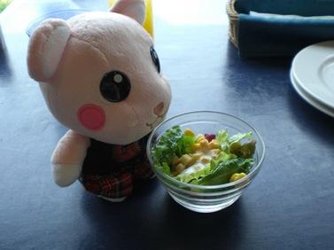 サラダで~す.JPG