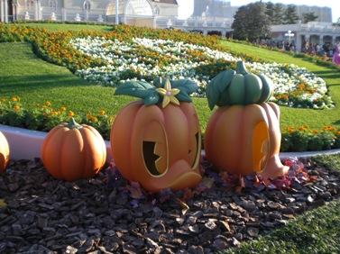 ドナルドかぼちゃ.JPG