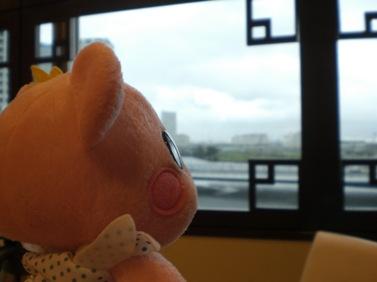 今日は雨なの.JPG
