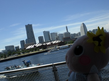 横浜の名所がいっぺんに収まる.JPG
