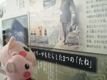 歴史を学ぼう.JPG