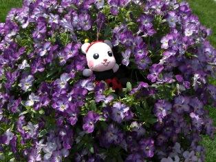 花の妖精②.jpg